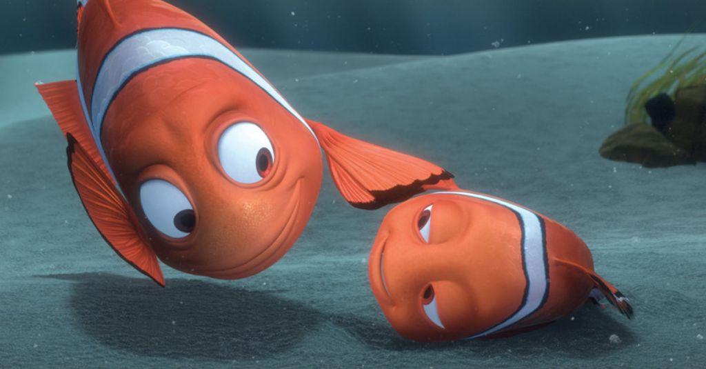 How do fish sleep?